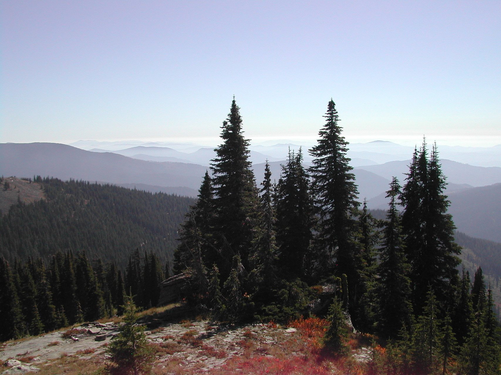 Friends of the Clearwater tell Congress in DC to protect the Nez Perce – Clearwater National Forests